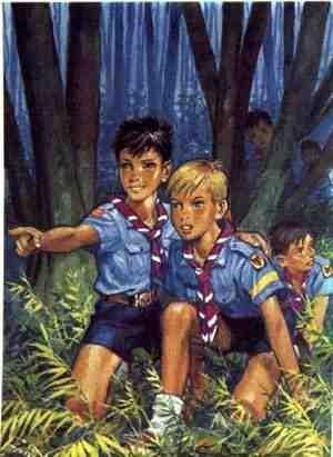 scouts bois.jpg